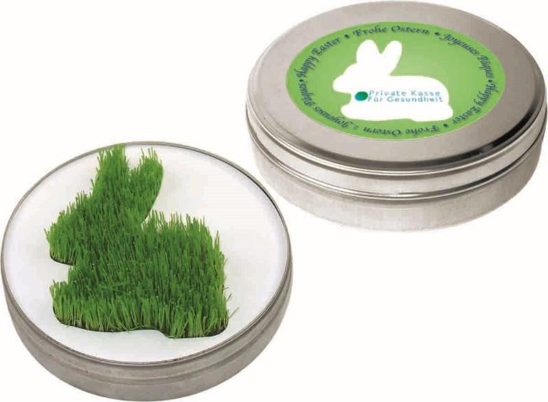 Growing Rabbit in the box, grass, incl. 1-4 c digi
