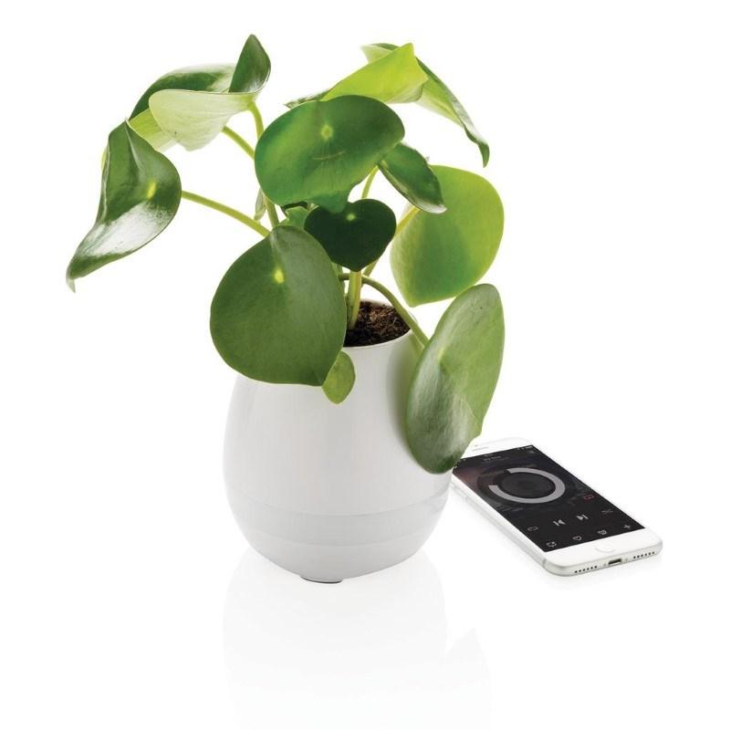 Plant speaker, wit
