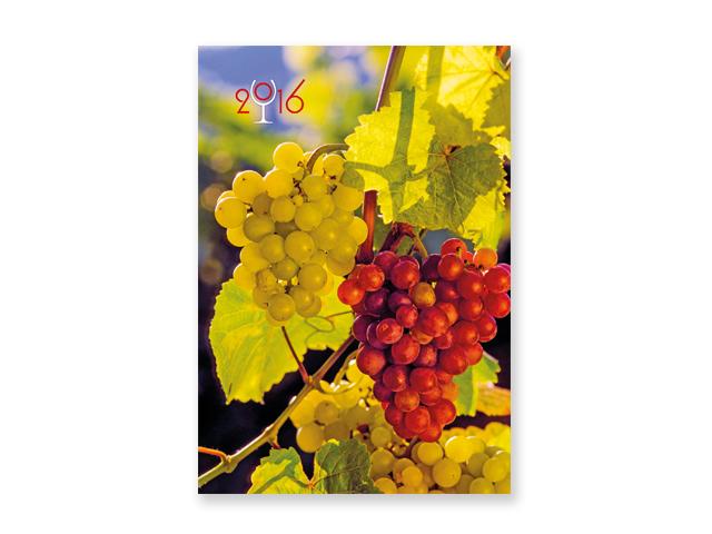 WINE, wall calendar, 32x46 cm